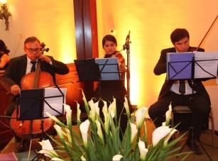 música coctel Perú